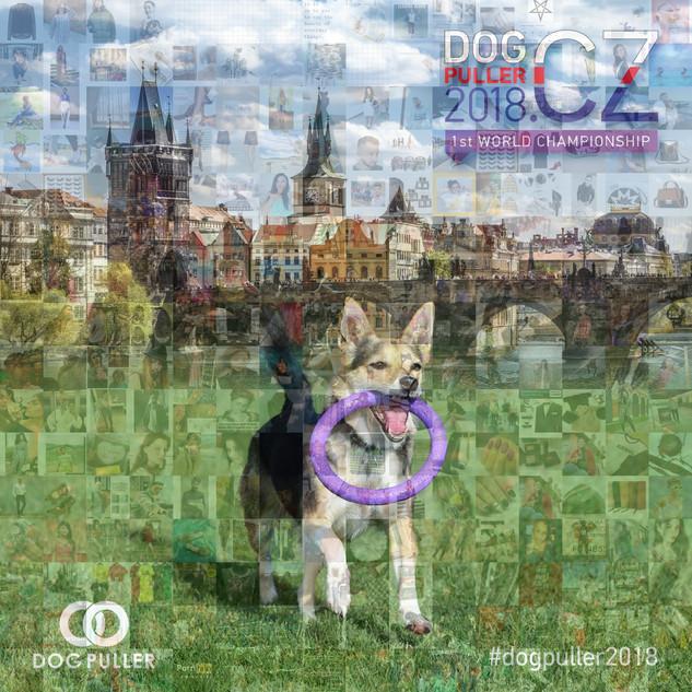dog puller mozaika
