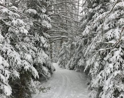 L'hiver au Québec...une saison fabuleuse