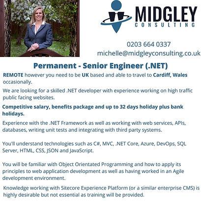 Senior Engineer (.NET).jpg
