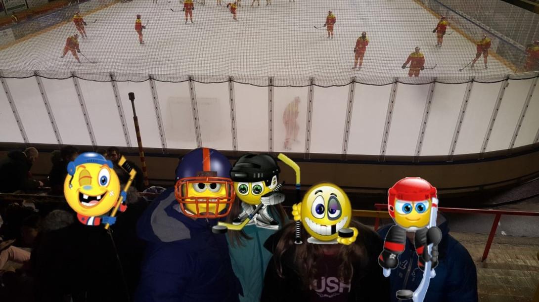 Hockey Biseau.jpg