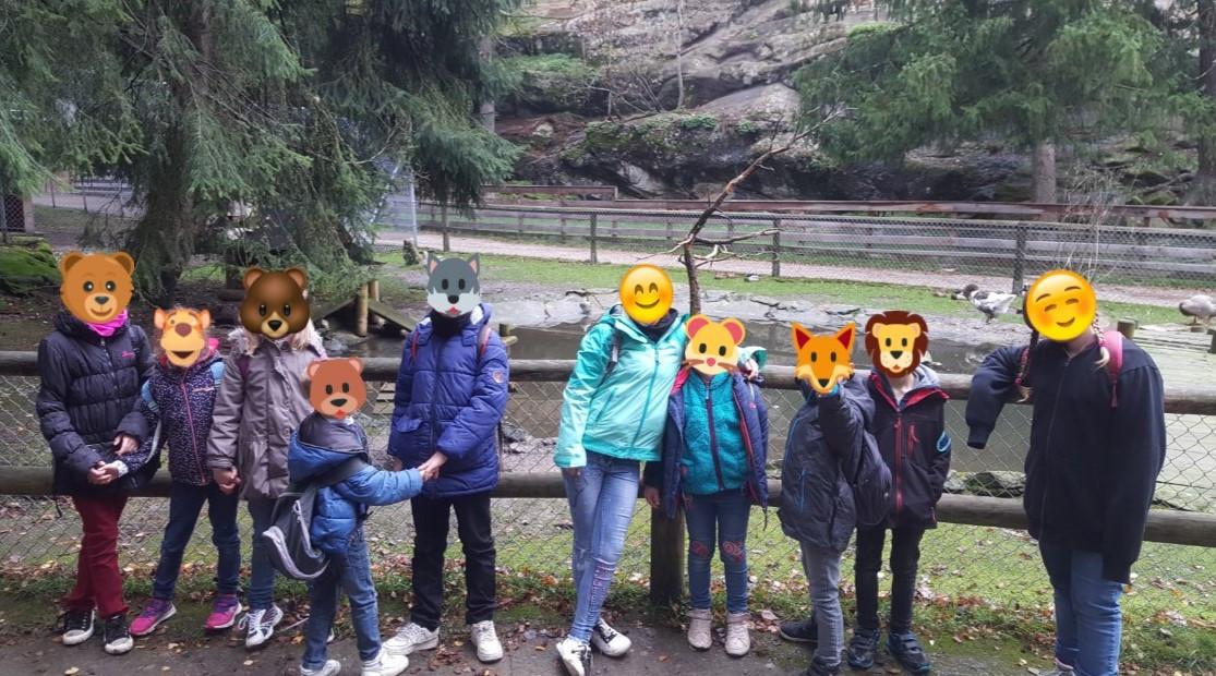 Zoo Suisse.jpg