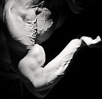 Biceps peak, vascular, vascularity, chiseled physique, Daniel Schou, Photo by Meline Höijer Schou