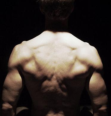 V-taper, V-shape, back muscles, Backworkout, traps