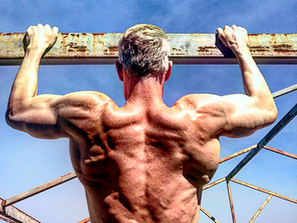 Spreading the wings - pullups vs. lats Pulldowns