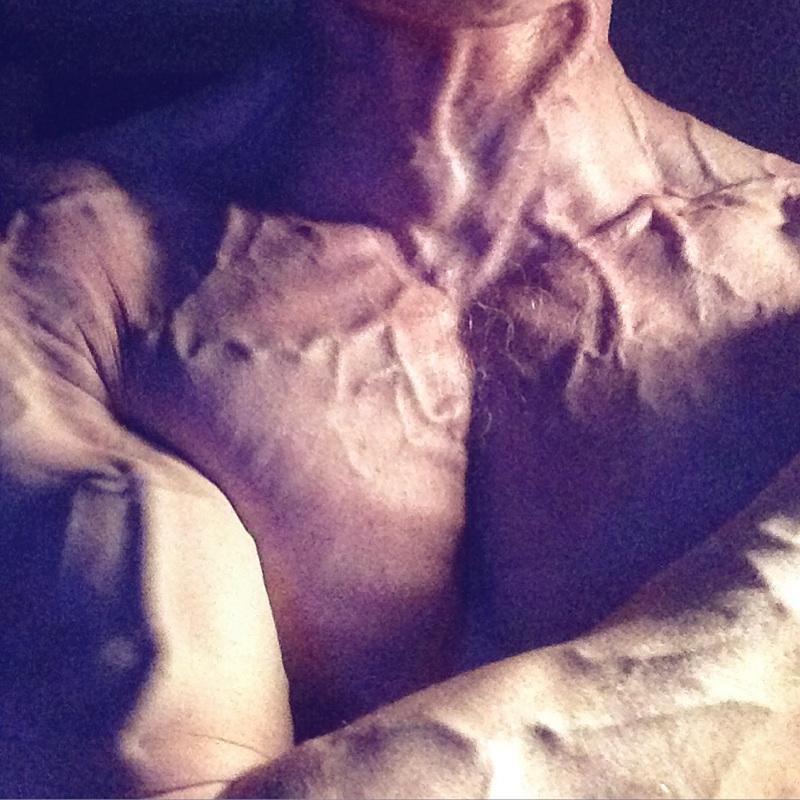 Daniel Schou, displaying vascularity.