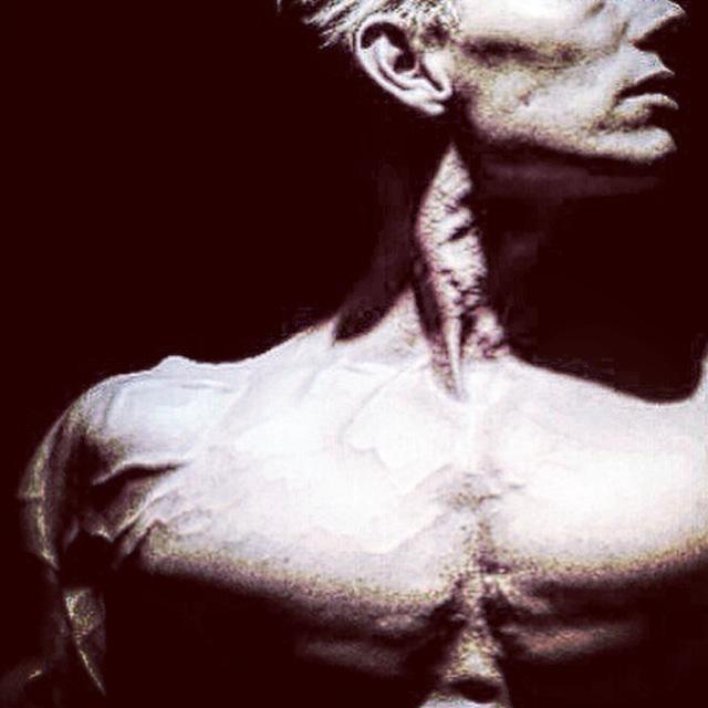 Daniel Schou, chiseled physique