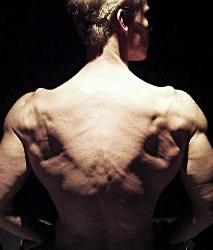 Lats, vascularity, muscular definition, Daniel Schou, Meline Höijer Schou (www.MelineArt.com), Vshape, back workout, chiseled physique