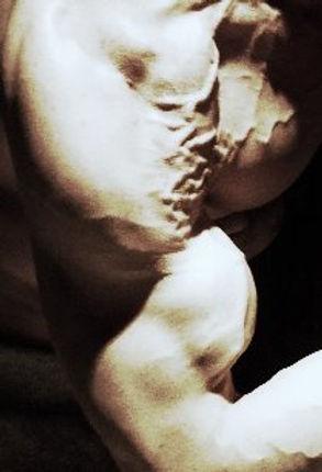 Biceps peak, vascular, vascularity, shoulders, Daniel Schou, photo by Meline Höijer Schou