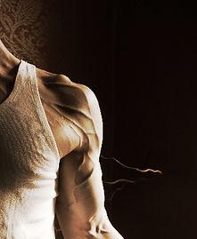 Vascularity, workout intensity, ripped, lean body, veins, Daniel Schou, photo by Meline Höijer Schou