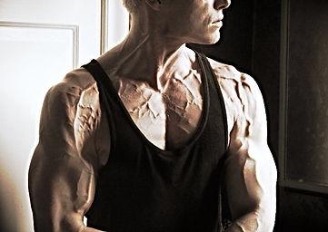 Vascularity, vascular, chiseled physique, Daniel Schou, Meline Höijer Schou, Melineart, lean body