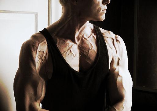 Vascular, vascularity, chiseled physique, Daniel Schou, Meline Höijer Schou (www.MelineArt.com), pecs, biceps workout