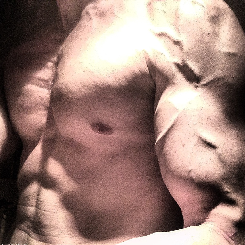 Daniel Schou The Blog. Vascularity and chest definition.