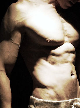 abs, serratus, chiseled physique, vascularity, Daniel Schou, photo by Meline Höijer Schou, www.melineart.com