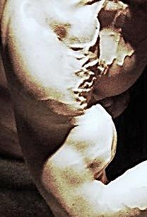 chiseled physique, vascularity, vascular, biceps peak, Daniel Schou, Meline Höijer Schou, Melineart