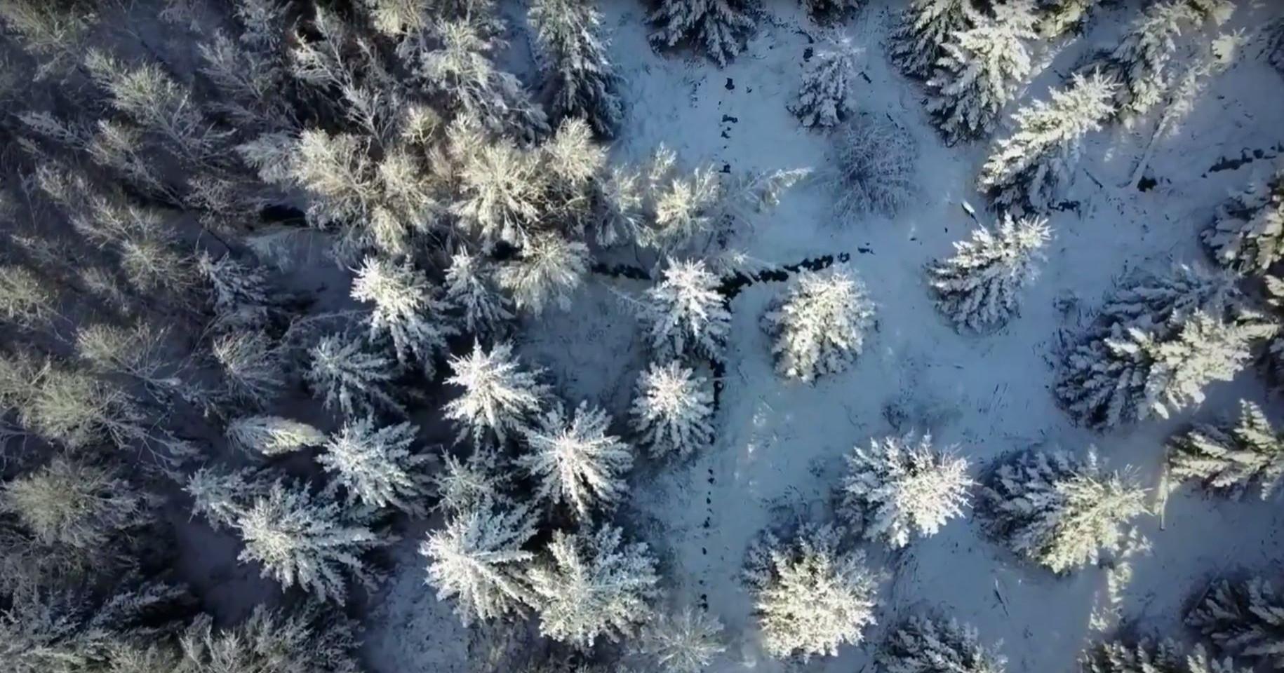 Vinter i Allerød