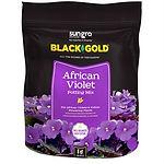 Black Gold Afrcan Violet Potting Mix