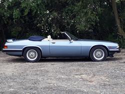 Jaguar XJS for Sale Sussex