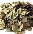 Image feuilles de Kinkéliba