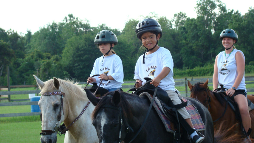 PR-08-01-horses (8).JPG