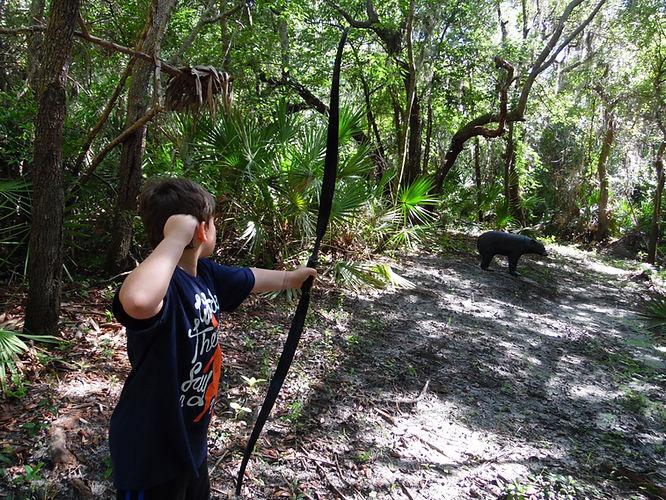 Archery Woods Walk.jpeg