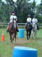 PR-2007-Horses (3).JPG
