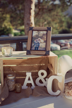 Courtney Aaron Wedding-Reception-0048