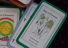 Ace and Page of Pentacles