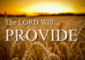 The Lord will Provide 2020.jpg