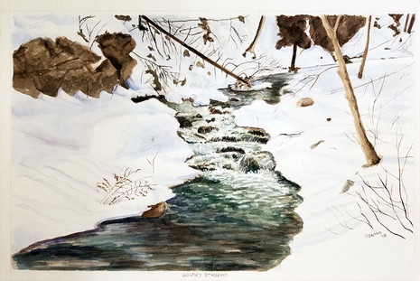 Wintry Stream