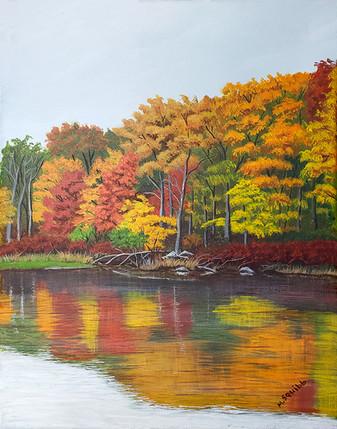 Fall Lake Askoti