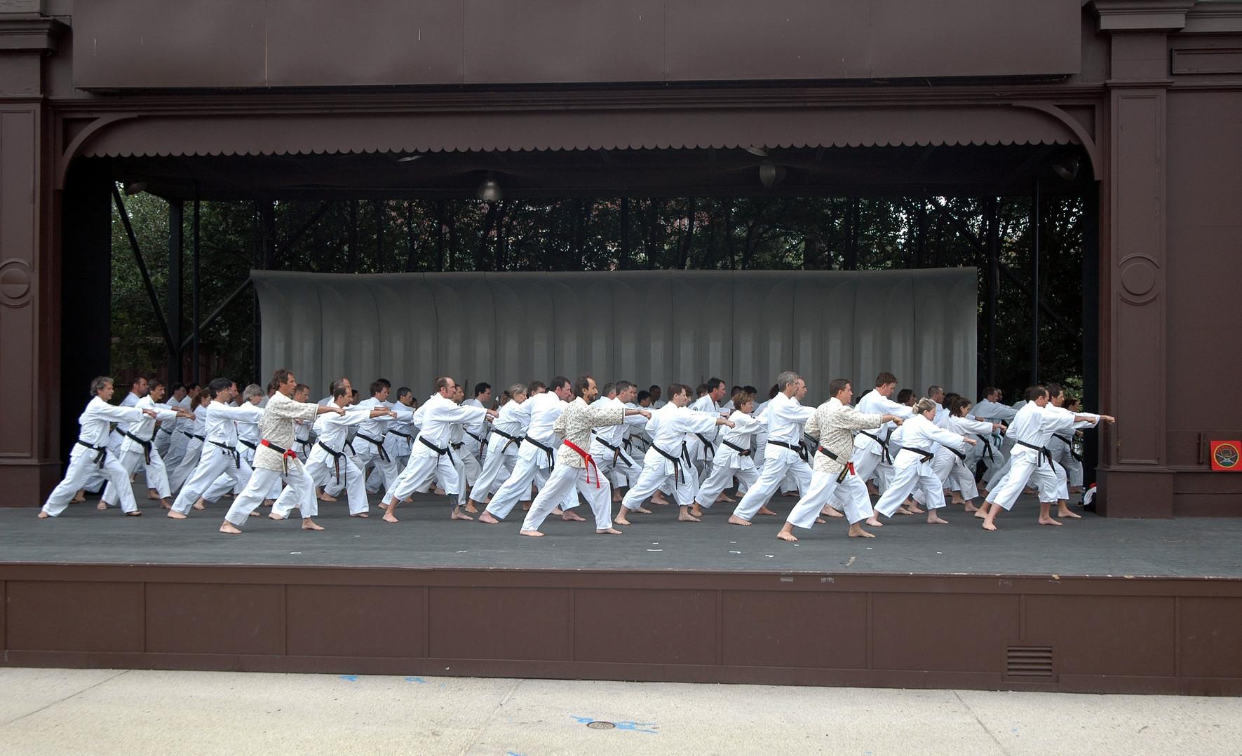 Group Kata Shot at Sylvan Theatre.jpg