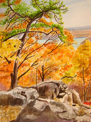 Fall Foliage and Rocks