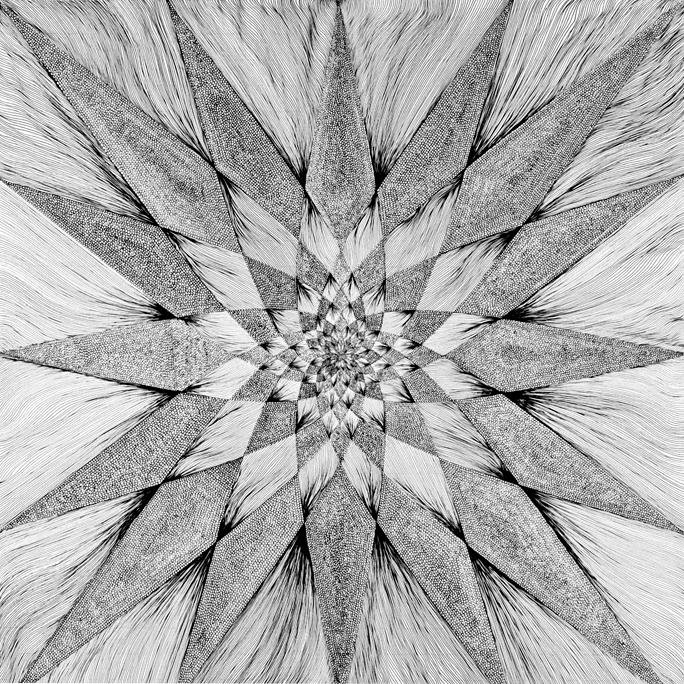 Toroidal Coherence | Norman Galinsky