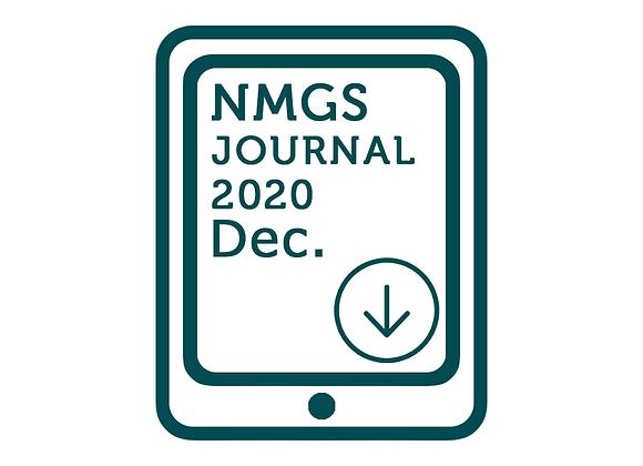 NMG Journal December 2020