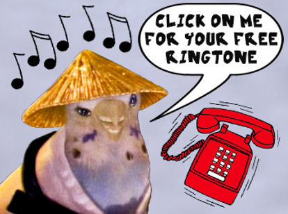 Karate Bird Free Ringtone