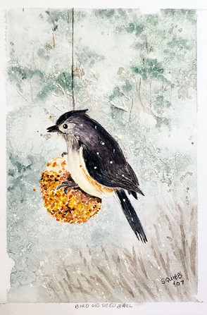 Bird on Seed Ball
