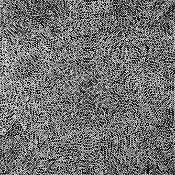 Consciousness Grid | Norman Galinsky