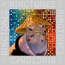 Karate Bird Free Ringtone