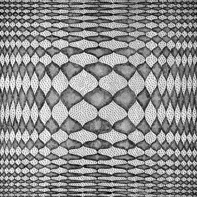 Log Rhythm 1 | Norman Galinsky