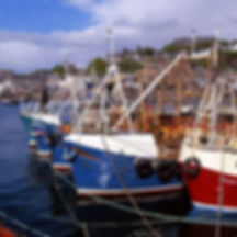Oban harbour fishing boats