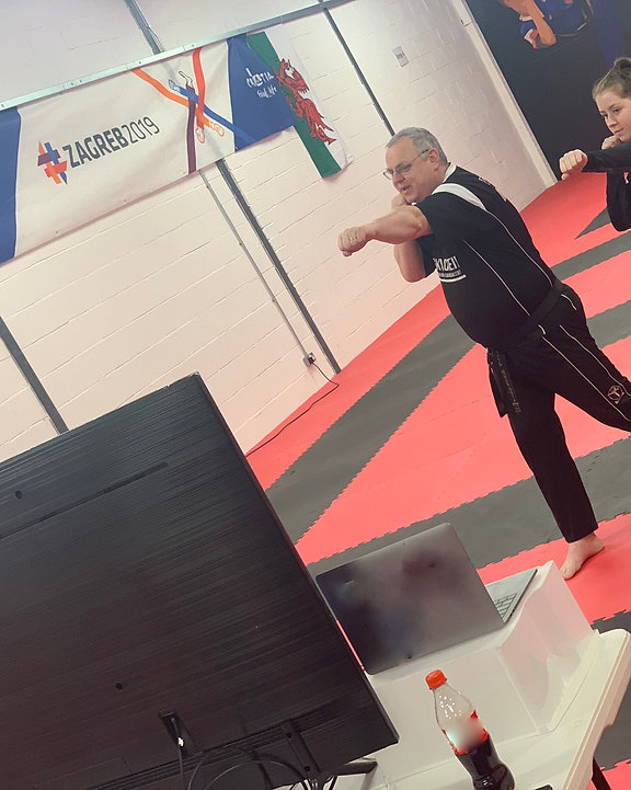 4 Week Online Martial Arts Course
