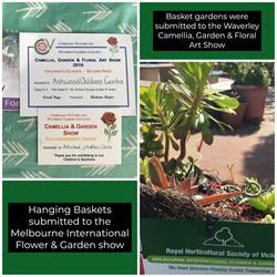 Baskets of Plants - Kinder