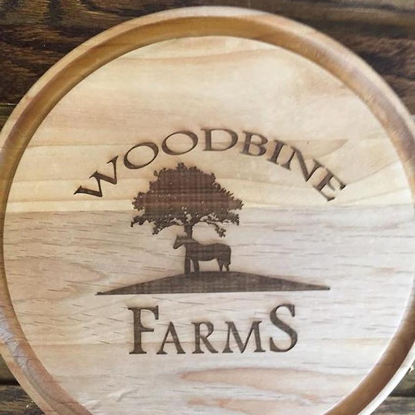 Woodbine HJAM Summer Show, USEF A
