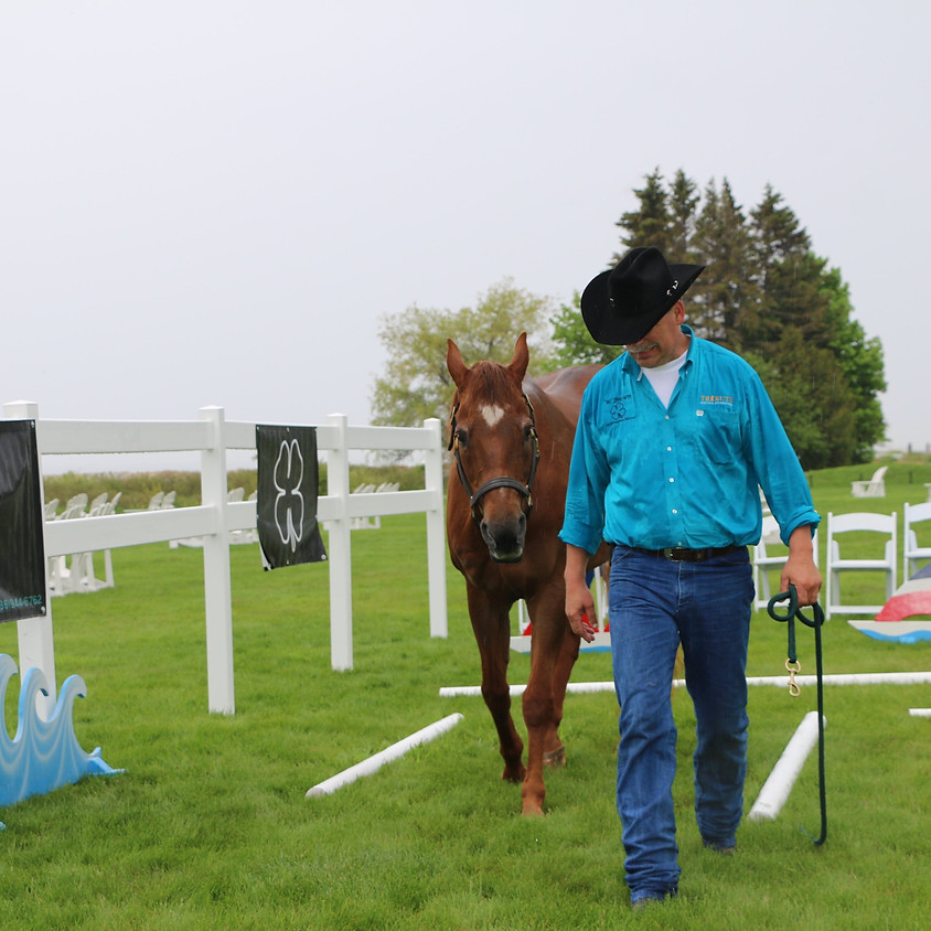 Ground Clinic with Bill Brown, Understanding your Equine