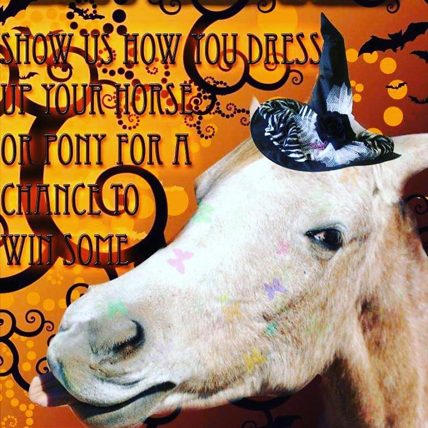 Halloween Horsey Party