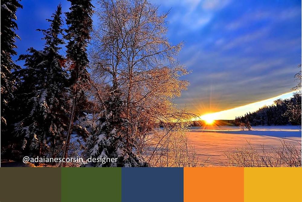 Paleta Inverno