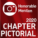 20 Pictorial-Sq-HM.png