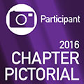 2016-Best-Chapter-Pictoral-Participant.jpg.jpg