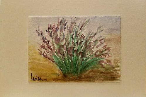 Purple iris Original Watercolor Greeting Card