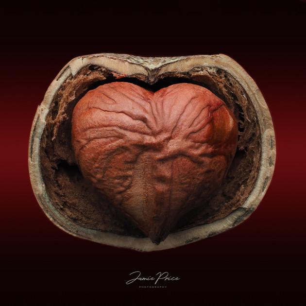 hazelnut heart
